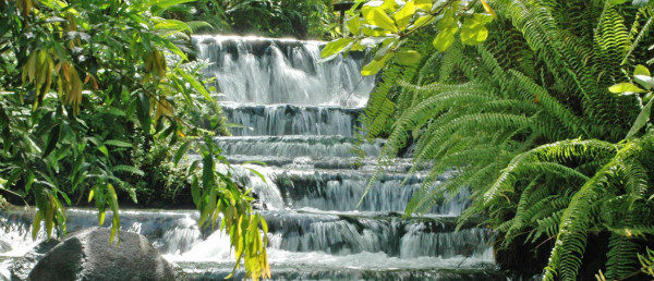 https://costaricawaterfalltours.com/wp-content/uploads/2015/10/Tabacon-Hot-Springs-Arenal-600x258-600x258.jpg